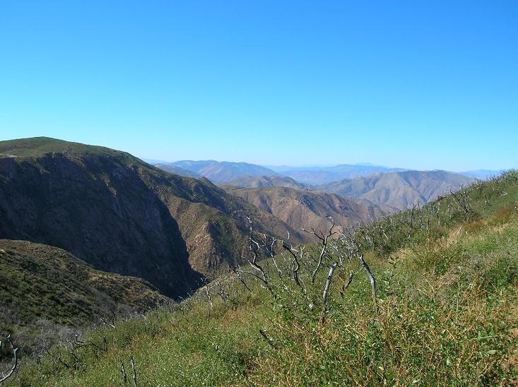 Looking north from Pacific Crest Trail