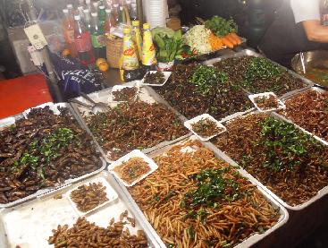 Insects at a Thailand Market