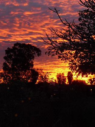 January sunrise, San Diego, California