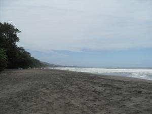 Playa Negra, north of Puerto Viejo
