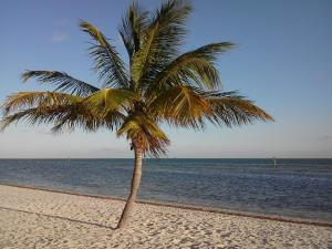 Smather's Beach, Key West