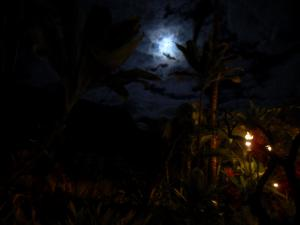 Moon rise at Old Lahaina Luau