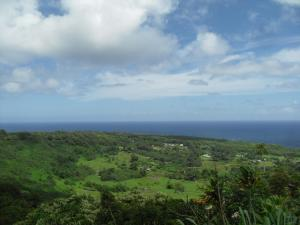 Beautiful view from the Road to Hana