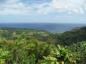Another beautiful view from the Road to Hana