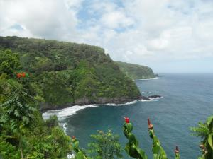 Gorgeous view of black sand beach - Road to Hana