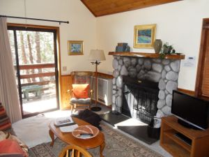 Quiet Creek Inn Cabin - living room with fireplace