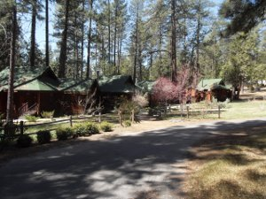 Quiet Creek Inn cabins